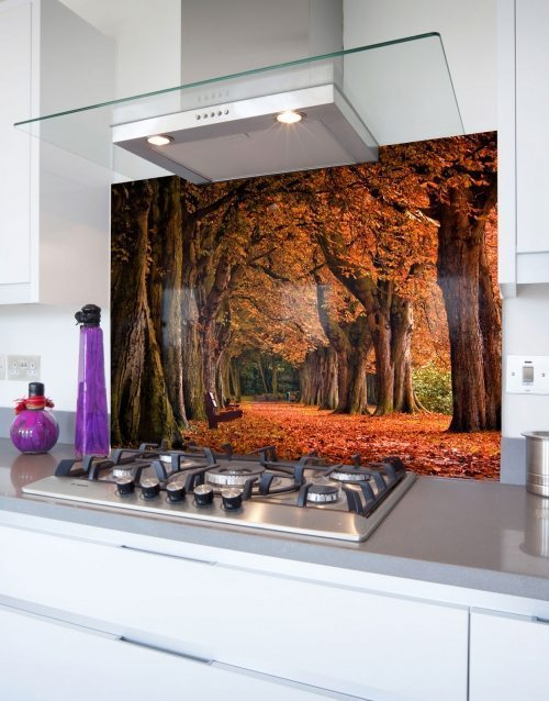Autumn-Trees-Picture-Glass-Hob-Splashback-1600-U-web-500x638.jpg